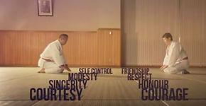 judo values.JPG