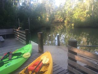 Kayaking Wolf Bay via Graham Creek in Foley Alabama