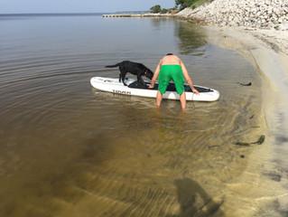 Paddle Boarding in Gulf Shores/Orange Beach