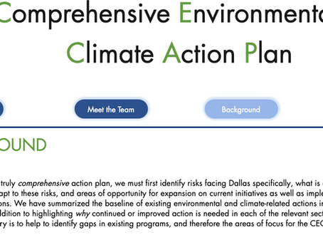 Action Needed: Comprehensive Environmental and Climate Action Plan (CECAP)