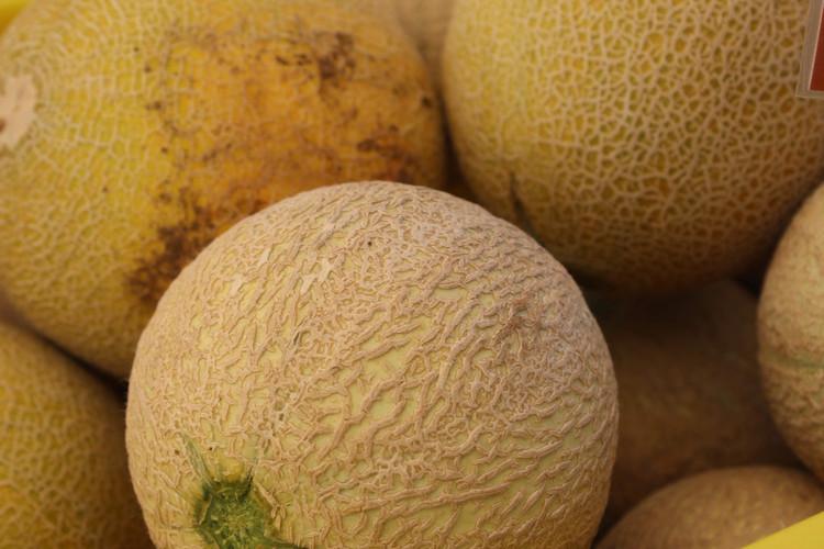 melons.JPG.jpg