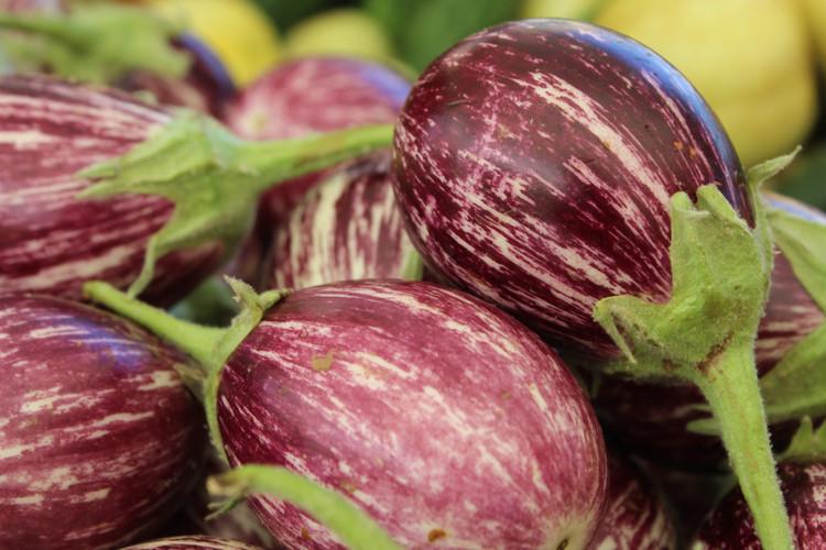 eggplant closeup.JPG.jpg