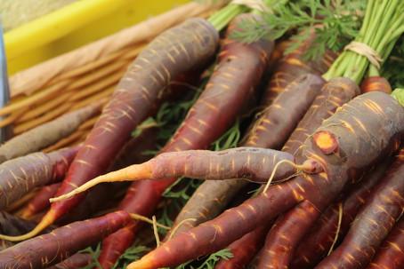 purple carrots.JPG.jpg