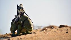 Desert Patrol ewm
