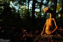 ET Woods ewm