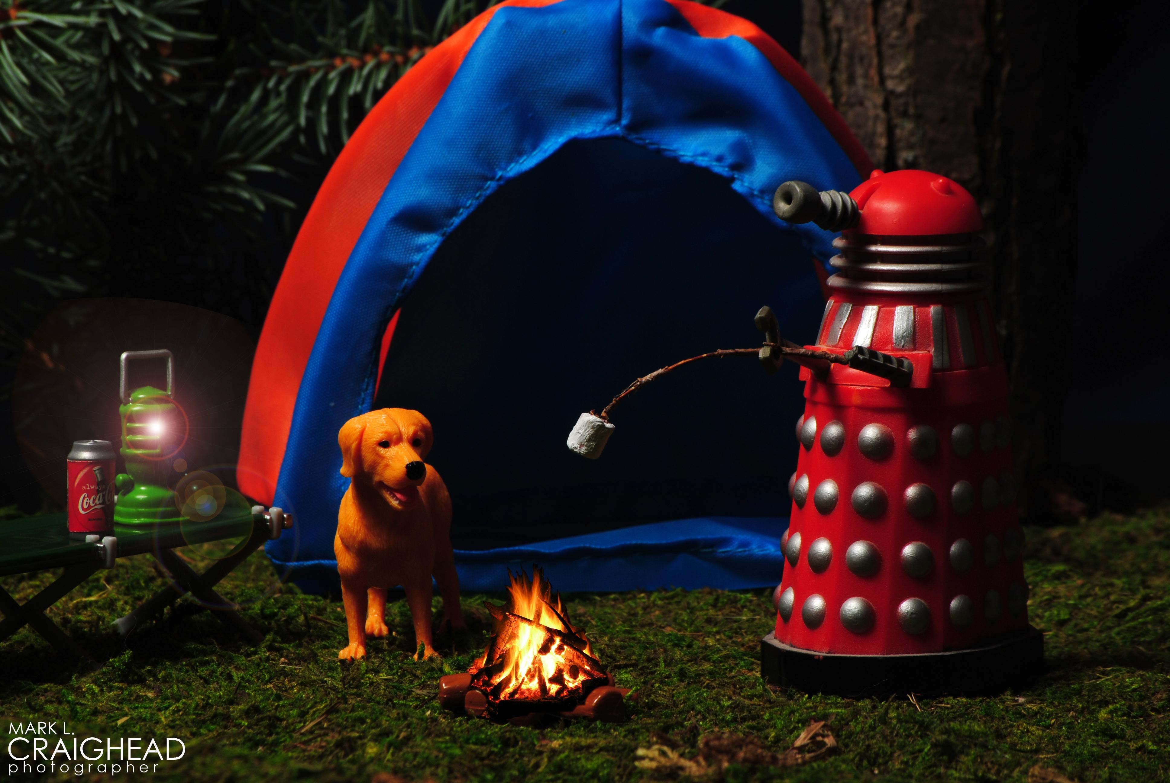 Dalek Camping2