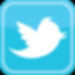 twitter-bird-icon-logo-B5634C6F6A-seeklo