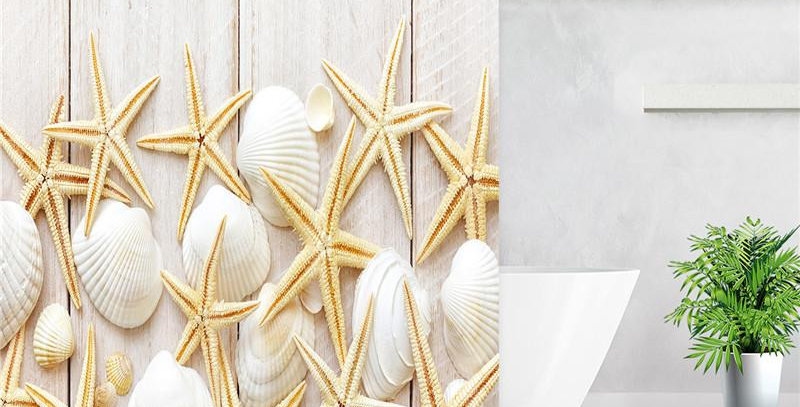 Sea Snails and Stars Shower Curtain