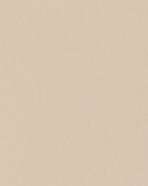 R115 Картон д/паспарту НЕОПРОФИ, 81x102см, 1.3мм (Тальк)
