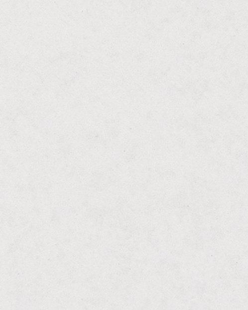 B3021 Картон д/паспарту НЕОПРОФИ, 81x102см, 1.3мм (Белоснежный)