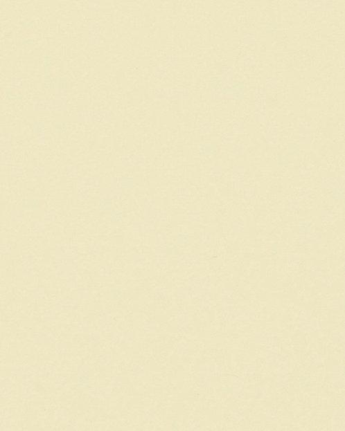 R315 Картон д/паспарту НЕОПРОФИ, 81x102см, 1.3мм (Терраса)