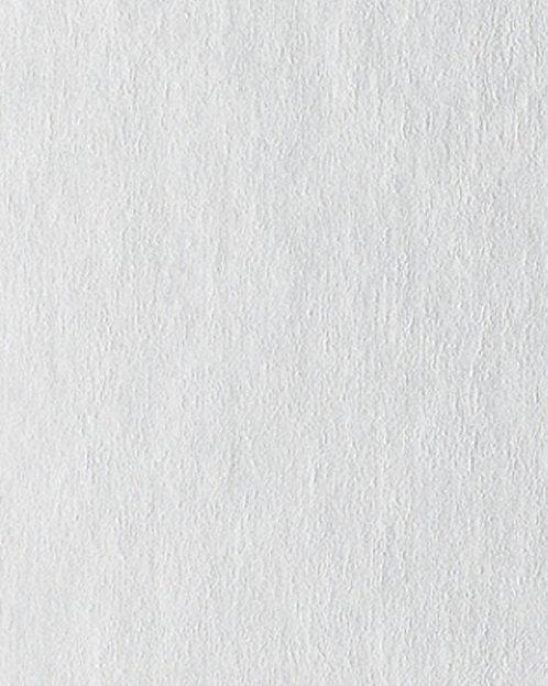 R793 Картон д/паспарту НЕОПРОФИ, 81x102см, 1.3мм (Светло-серебряный)