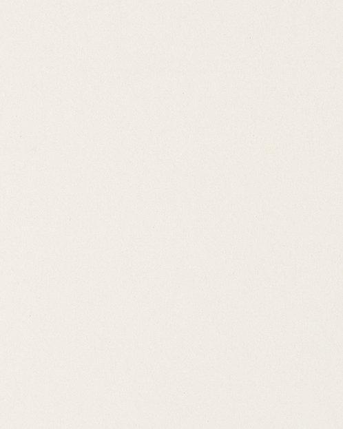 R101 Картон д/паспарту НЕОПРОФИ, 81x102см, 1.3мм (Спокойный белый)