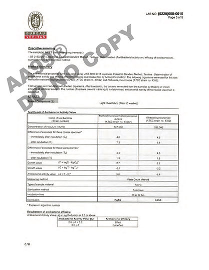 AA99®_Report_Page_5.jpg