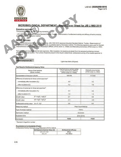 AA99® Report Page 4.jpg