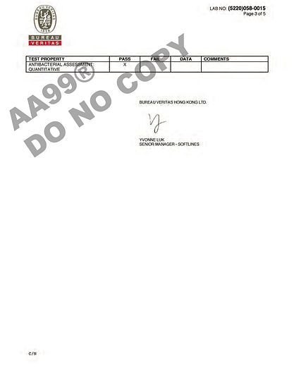 AA99® Report Page 3.jpg