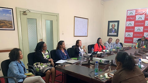 Ethiopia-GBV-Meeting-with-EEU (1).jpg