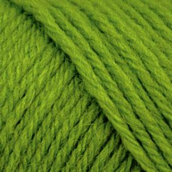 "Brown Sheep Company Wildfoote Sock Yarn ""Deco Lime"" 22"