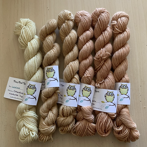 Tiny Owl Yarn Leeloo Minis