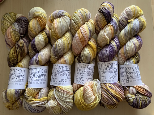 """Shirsty Cat Color Club BFL Sport """"Wishing & Hoping"""""""