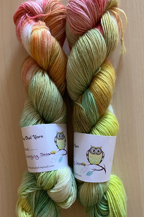 "Tiny Owl Yarn Rufus ""Changing Seasons"""