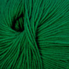 "Cascade Yarns 220 Superwash ""Christmas Green"" 864"