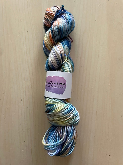 """Brediculous Yarns Joxer DK """"A Stroll in the Park"""""""