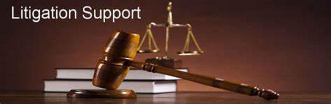 Litigation Support Image.jpg