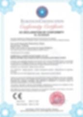 HIKMETOGLU - CE.pdf.jpg