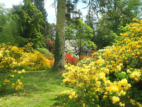 Hergest Croft Gardens.jpg