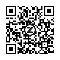 Village Kidz Zapper.png