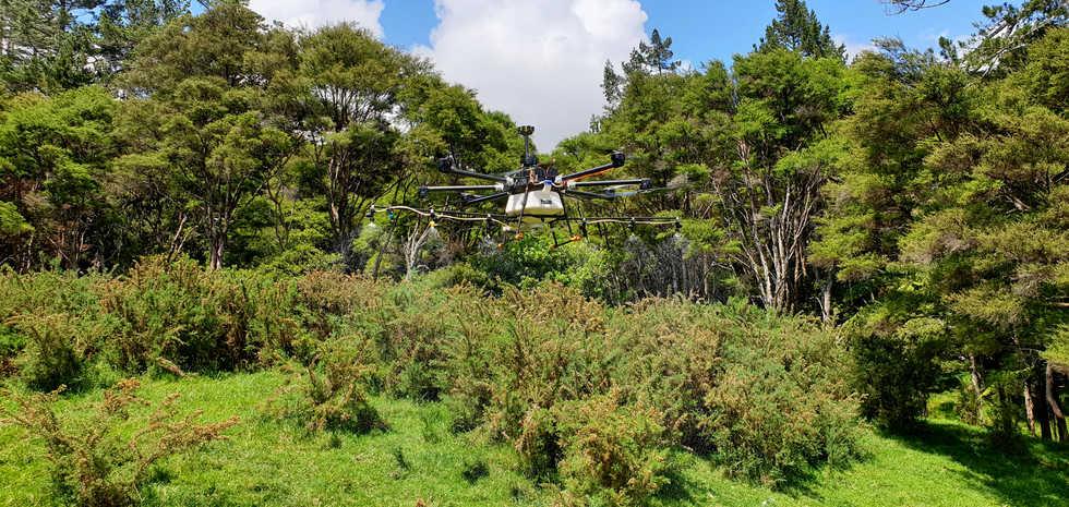 Drone Spraying