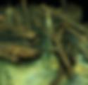 Screen Shot 2020-03-09 at 11.02.06.png