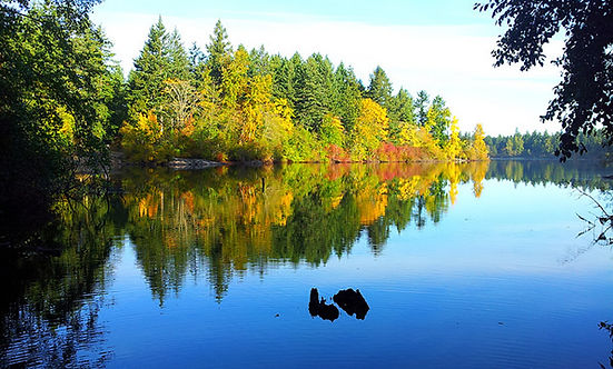 elk-beaver-lake victoria SUP.jpg