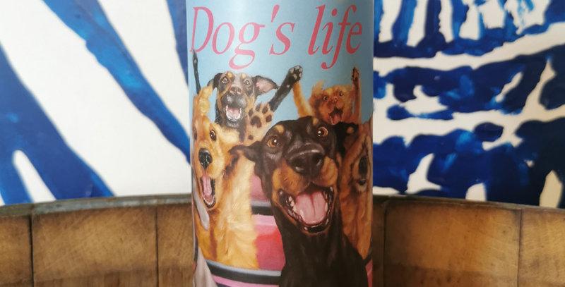 Dog's life - lot de 4