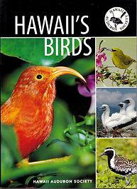 hawaiis birds.jpeg