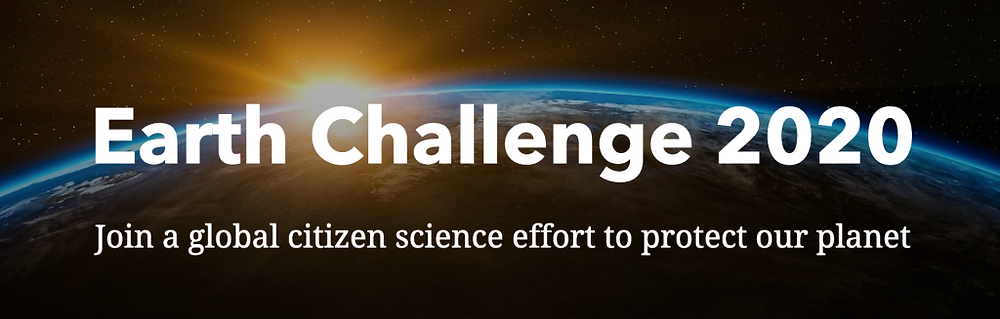 Earth Challenge 2020