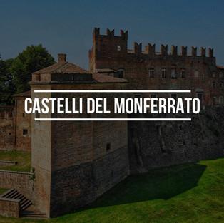 TOUR CASTELLI DEL MONFERRATO