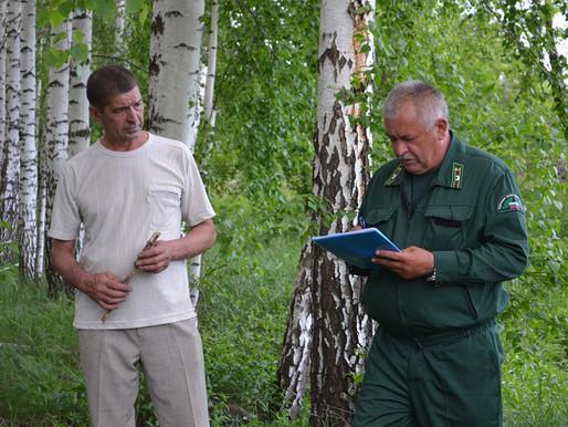 Лесные инспекторы подвели итоги работы за полугодие
