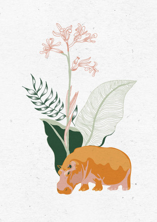 alma-illustration-collection-draw-hippo.jpg