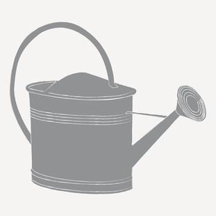 Edition jouvence - illustration individuelle5.jpg