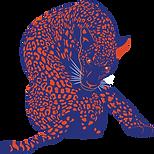 illustration site internet (guépard) .png