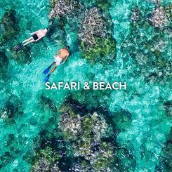 SAFARI & BEACH.png