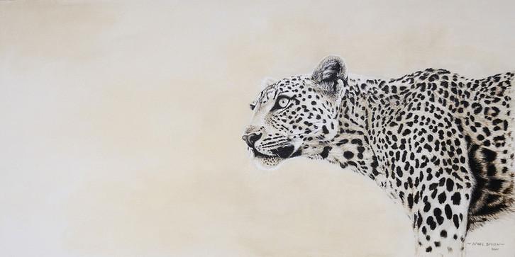 Inquisitive Leopard