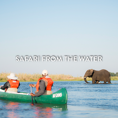 SAFARI FROM THE WATER.png