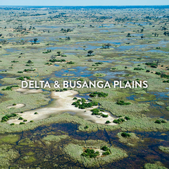 DELTA & BUSANGA PLAINS.png