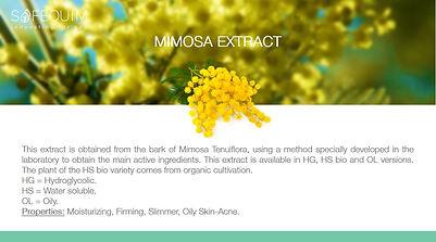 025 MIMOSA EXTRACT.jpg