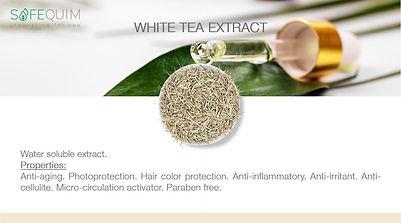 013 WHITE TEA.jpg