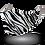 Thumbnail: Zebra Stripes
