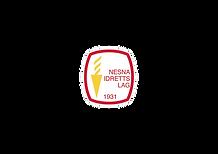 nesna_logo.png
